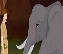 The Elephant & The Forester