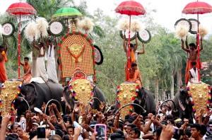 Thrissur-Pooram-Elephants-Festival-Malayalam